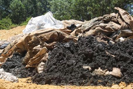 Thu gom bùn thải Biên Hòa